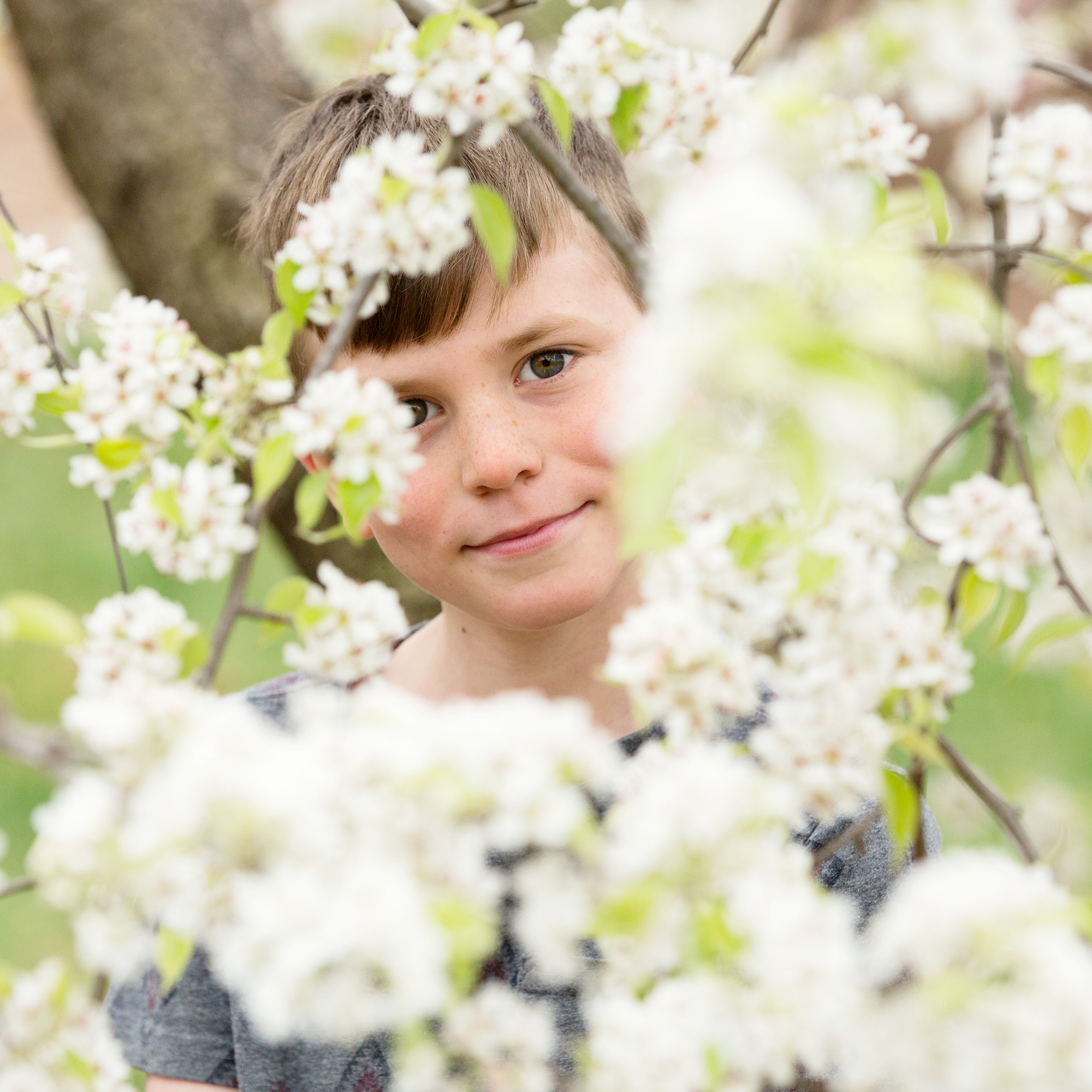 Spring Blossom Sessions
